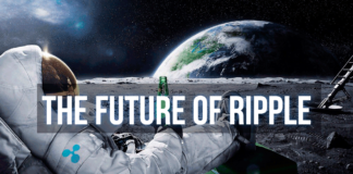 The Future of Ripple XRP. Why its Price Has Grown Rapidly