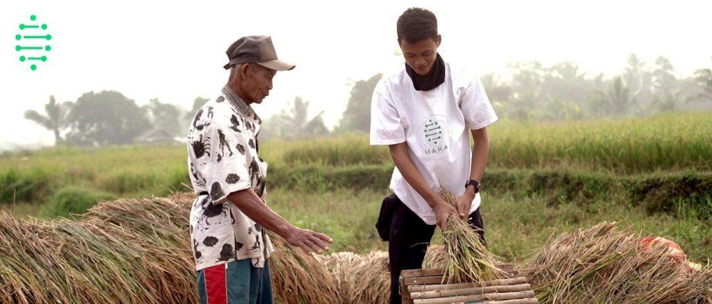 HARA Agriculture Blockchain