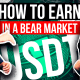 relative-trade-in-a-bear-market