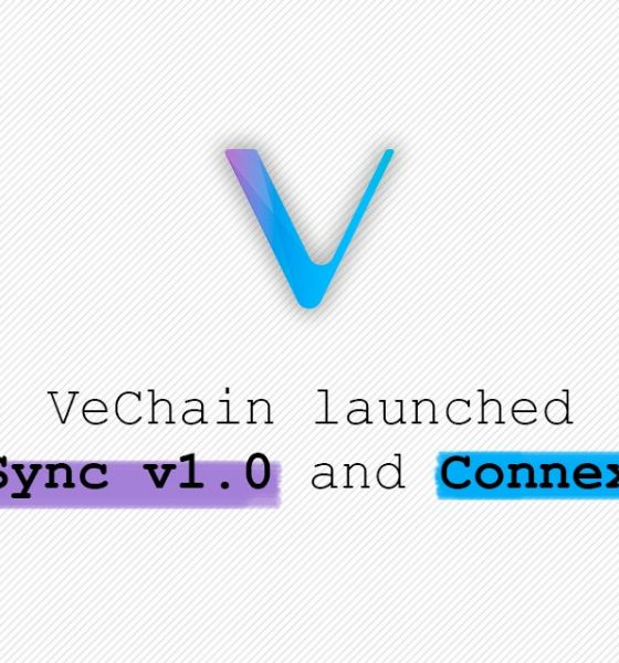 vechain-new_synch_connex