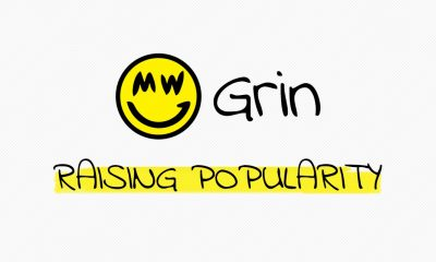 grin mining raising china
