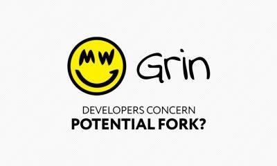 Grin Fork