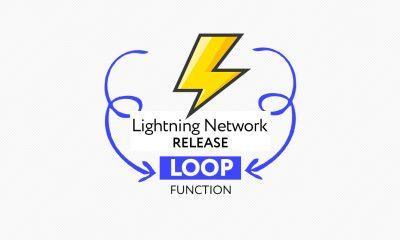 Lightning Network Loop