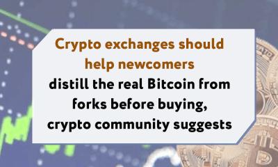 Crypto exchanges should help newcomers distill the real Bitcoin from forks before buying, crypto community suggests