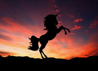 silhouette of a unicorn against twilight sky
