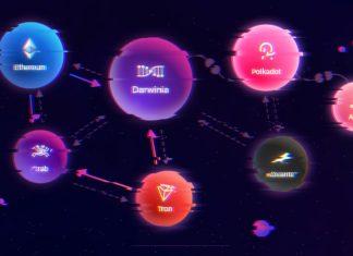 darwinia network